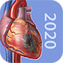 pathophys_app icon_perpetual_90_rounded.png